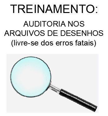 TREINAMENTO-AUDITORIA