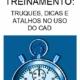 TREINAMENTO-DICAS